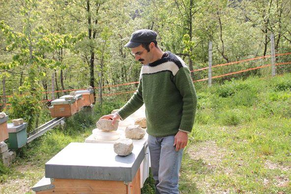 visita azienda apistica pizzone
