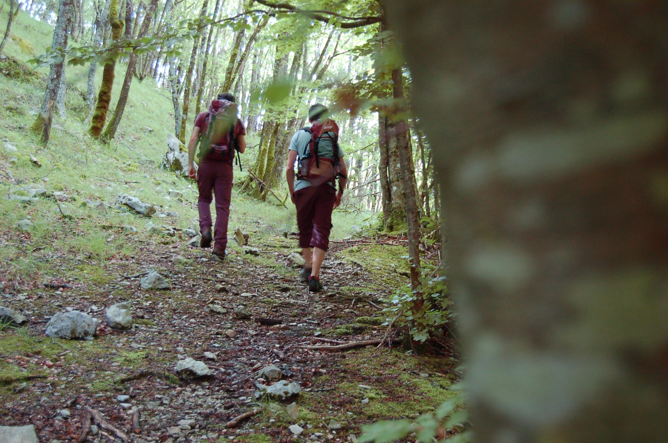 Escursioni-Giornaliere-nel-Parco-nazionale-abruzzo-lazio-molise